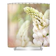 Garden Ballet Shower Curtain