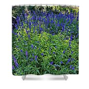 Garden Bench And Sage Shower Curtain