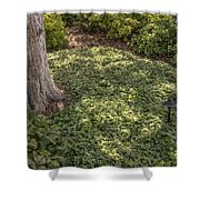 Garden Color At Woodward Park 21f Shower Curtain