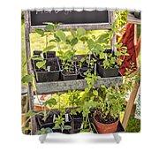 Garden Herb Nursery Shower Curtain