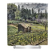 Garden Houses On Daffodil Hill  Shower Curtain