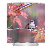 Garden Joy Shower Curtain
