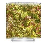 Garden Lettuce - Green Gold Shower Curtain