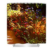 Garden Pathway Shower Curtain