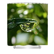 Garden Reflections Shower Curtain