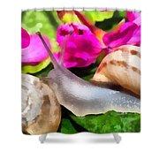 Garden Snails Shower Curtain