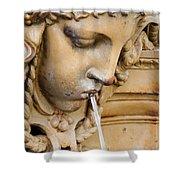 Garden Statue Of Tethys Shower Curtain