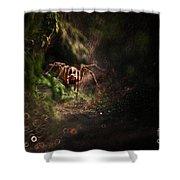 Garden Stories Iv Shower Curtain
