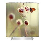 Garden Stories V Shower Curtain