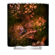 Garden Stories Viii Shower Curtain