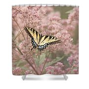 Garden Visitor - Tiger Swallowtail Shower Curtain