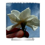 Gardenia For You My Dear Shower Curtain