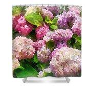 Gardens - Pink And Lavender Hydrangea Shower Curtain