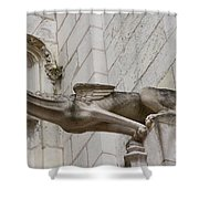 Gargoyle Cathedral Tours Shower Curtain