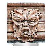 Gargoyle Head Helsingborg Shower Curtain