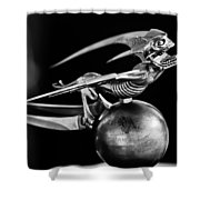 Gargoyle Hood Ornament 2 Shower Curtain