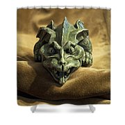 Gargoyle Or Grotesque Shower Curtain