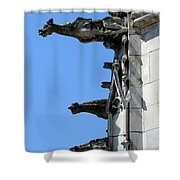 Gargoyles In A Row Shower Curtain