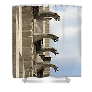 Gargoyles Of Notre Dame Shower Curtain