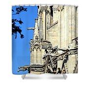 Gargoyles Of Notre Dame De Paris Shower Curtain
