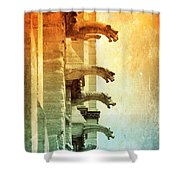 Gargoyles With Textures And Color Shower Curtain