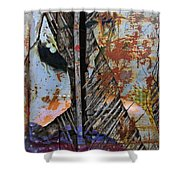 Gash Of Geisha  Shower Curtain