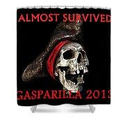 Gasparilla 2013 Postertshirt Work B Shower Curtain