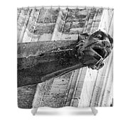 Gate Keeper Shower Curtain