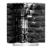 Gate To Grave  Shower Curtain