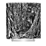 Gate To Paradise Shower Curtain