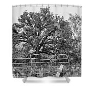 Gated Black And White Magic Shower Curtain