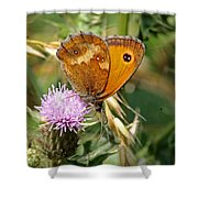 Gatekeeper Butterfly Shower Curtain