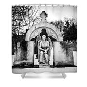 Gateway Gaurdian Shower Curtain