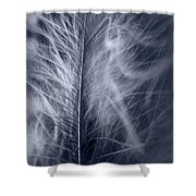 Gather Shower Curtain