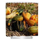 Gather The Harvest Shower Curtain
