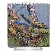 Gator Camo Shower Curtain
