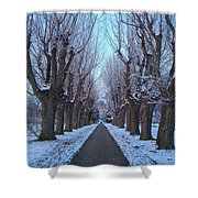Gauntlet Of Trees To Hohenheim Castle Shower Curtain