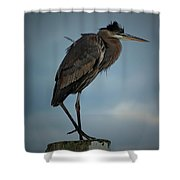 Gbh Pose II Shower Curtain
