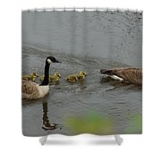 Geese And Goslings At The Flint River Shower Curtain