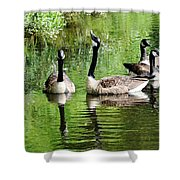 Geese And Green Shower Curtain