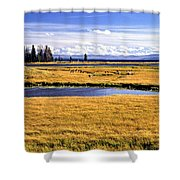 Geese At Yellowstone Lake Shower Curtain