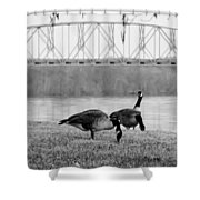 Geese By The Ohio Shower Curtain