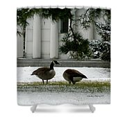 Geese In Snow Shower Curtain