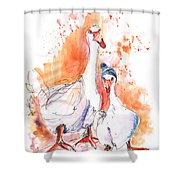 Geese In Spanish Winter Shower Curtain