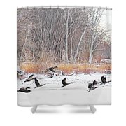 Geese Over Maumee River Shower Curtain