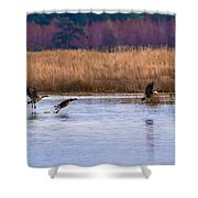 Geese Up And Away Shower Curtain