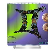 Gemini By Alice Terrill And William Baumol Shower Curtain