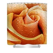Gemini Dew Shower Curtain