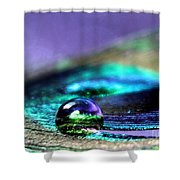 Gemini Shower Curtain