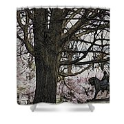 General Meade In The Cherry Blossoms Shower Curtain